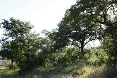 MERIDIAN WAY, Buchanan Dam, TX 78609 - Photo 2