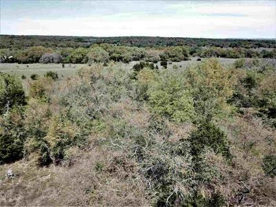 TRACT 1 CR 224 HIGHWAY, Briggs, TX 78602 - Photo 1