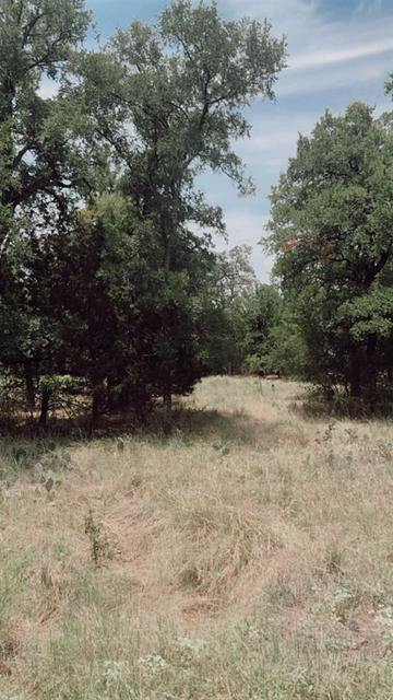 LOTS 576-579 WOODLAND HILLS DRIVE, Granite Shoals, TX 78654 - Photo 2