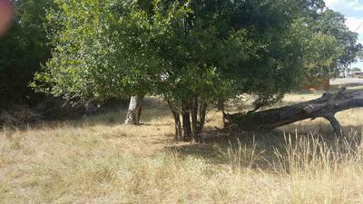 459 N PHILLIPS RANCH RD, Granite Shoals, TX 78654 - Photo 1