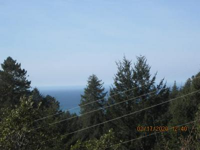 146 SPRING RD, Shelter Cove, CA 95589 - Photo 1