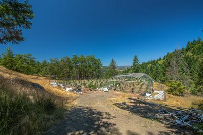 000 BUCK MOUNTAIN ROAD, Bridgeville, CA 95526 - Photo 2