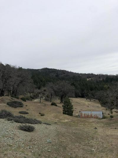 0000 BUCK MOUNTAIN, Dinsmore, CA 95526 - Photo 2