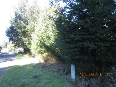 437 REDWOOD RD, Shelter Cove, CA 95589 - Photo 2