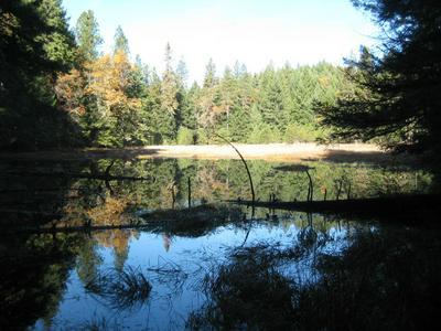 160A BLUFF CREEK ROAD, Zenia, CA 95595 - Photo 2