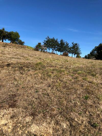 162 FRANKLIN CT, Fortuna, CA 95540 - Photo 2