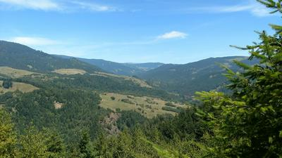 385 ACRES BUTTE CREEK ROAD, Kneeland, CA 95549 - Photo 1