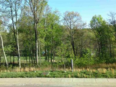 LOT 44 FAIRWAY DRIVE, Flatwoods, KY 41139 - Photo 2