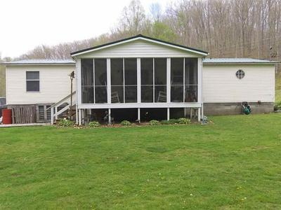 688 COUNTY ROAD 51, PEDRO, OH 45659 - Photo 2