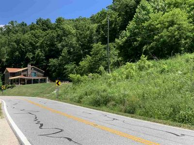 0 STATE ROUTE 243, Chesapeake, OH 45619 - Photo 1