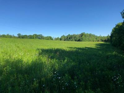 0 LEVEL GREEN ROAD, Berkshire, NY 13736 - Photo 2