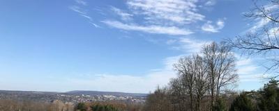 0 MECKLENBURG ROAD, Ithaca, NY 14850 - Photo 2