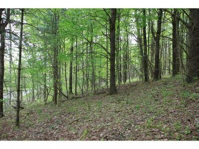 0 HORNBROOK (SOUTH SIDE) ROAD, Ithaca, NY 14850 - Photo 1