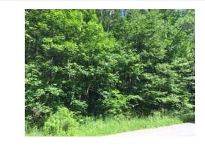 1196 BELL HILL ROAD, Lindley, NY 14858 - Photo 1