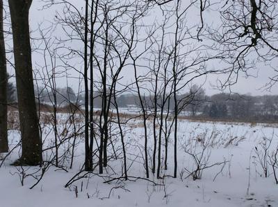 0 0 MECKLENBURG ROAD, Ithaca, NY 14850 - Photo 2