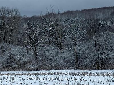 0 ATWOOD ROAD, Moravia, NY 13118 - Photo 2