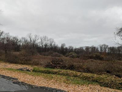 0 BULL HILL, Newfield, NY 14805 - Photo 2