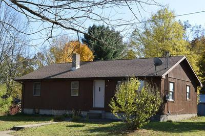 49 WILLIAMS RD, CANDOR, NY 13743 - Photo 1