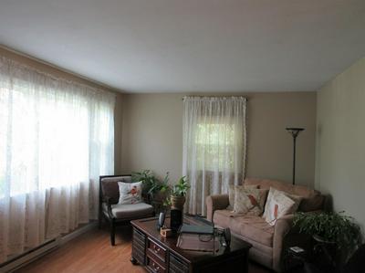 10 BEAM HILL RD, Dryden, NY 13053 - Photo 2