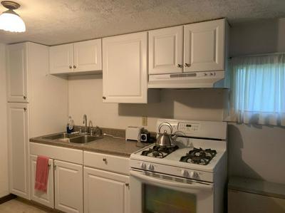 356 SCHUMACHER RD, CANDOR, NY 13743 - Photo 2