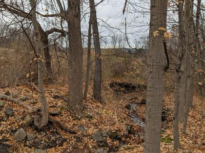 0 BULL HILL, Newfield, NY 14805 - Photo 1