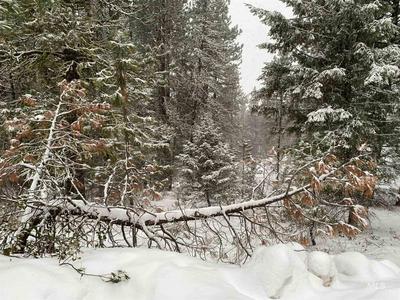 479 HILLTOP RD, Cascade, ID 83611 - Photo 1