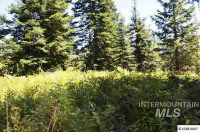 102 KYLE RD, Anatone, WA 99401 - Photo 1