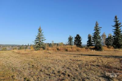 LOT 12 RIVER RANCH ROAD, McCall, ID 83638 - Photo 1
