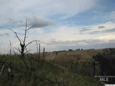 SEC34 TWP 10 RANGE 42 ALLEN LAND, Pomeroy, WA 99347 - Photo 1