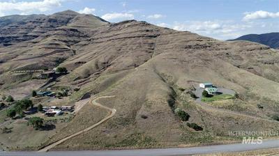 NNA GRANDE RONDE ROAD, Asotin, WA 99402 - Photo 1