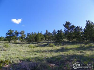 0 TAYLOR, Allenspark, CO 80510 - Photo 2