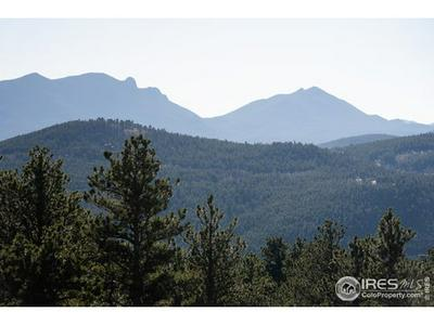 13 JUNEAU CIR, Nederland, CO 80466 - Photo 2
