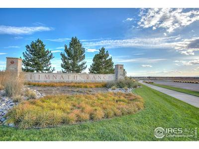 5139 RIVER ROADS DR, Timnath, CO 80547 - Photo 2