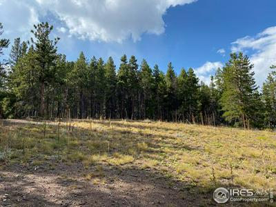 879 COUNTY ROAD 128W, Nederland, CO 80466 - Photo 2