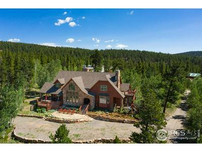 22955 PEAK TO PEAK HWY, Nederland, CO 80466 - Photo 2