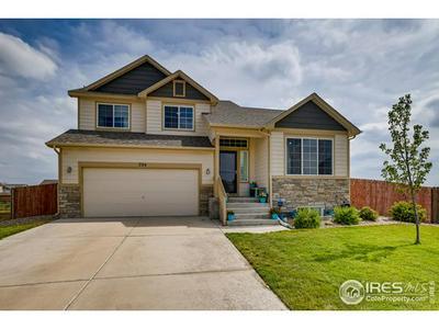 704 WILDERLAND CT, Pierce, CO 80650 - Photo 1