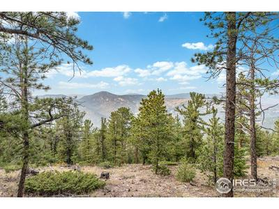 1825 SOUL SHINE RD, Drake, CO 80515 - Photo 1