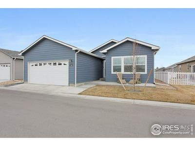 7885 CATTAIL GRN, Frederick, CO 80530 - Photo 2