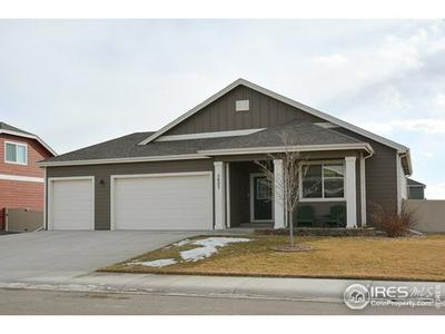 3803 EUCALYPTUS ST, Wellington, CO 80549 - Photo 1