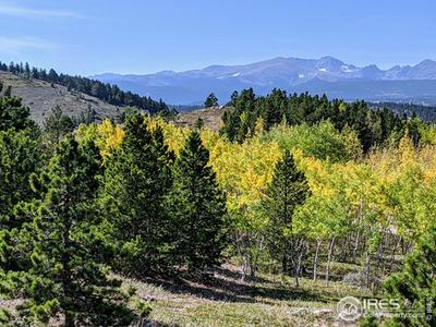 5210 RIDGE RD, Nederland, CO 80466 - Photo 1