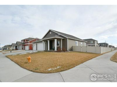 3803 EUCALYPTUS ST, Wellington, CO 80549 - Photo 2