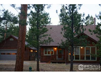 18247 STATE HIGHWAY 7, Lyons, CO 80540 - Photo 2