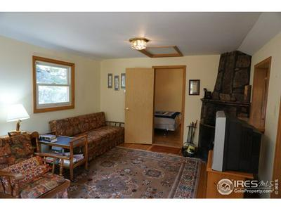320 SKI RD, Allenspark, CO 80510 - Photo 2