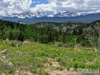 5280 RIDGE RD, Nederland, CO 80466 - Photo 2