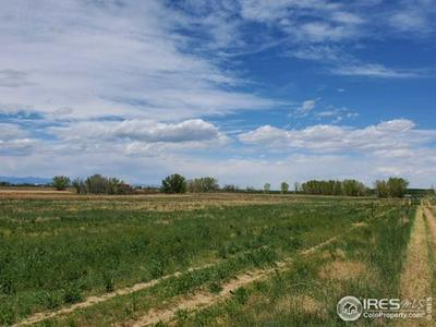 0 LOT A COUNTY ROAD 21, Fort Lupton, CO 80621 - Photo 2