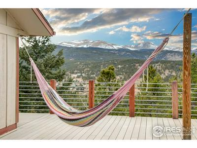 40 PINECLIFF TRL, Nederland, CO 80466 - Photo 2
