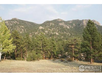 0 WILDWOOD DR, Estes Park, CO 80517 - Photo 1