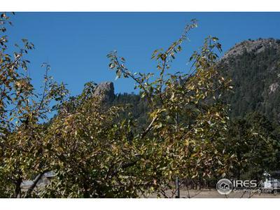1010 S SAINT VRAIN AVE UNIT A5, Estes Park, CO 80517 - Photo 2