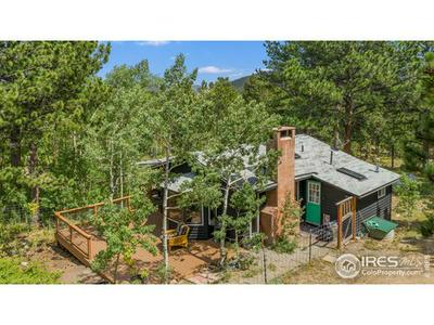 103 COUNTY ROAD 84 W, Allenspark, CO 80510 - Photo 2