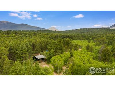 103 COUNTY ROAD 84 W, Allenspark, CO 80510 - Photo 1